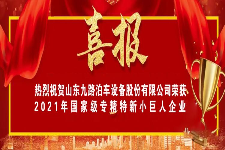 """喜報!熱烈祝賀九路泊車榮獲國家級 專精特新""""小巨人""""企業"""